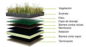 capas-techo-vegetal